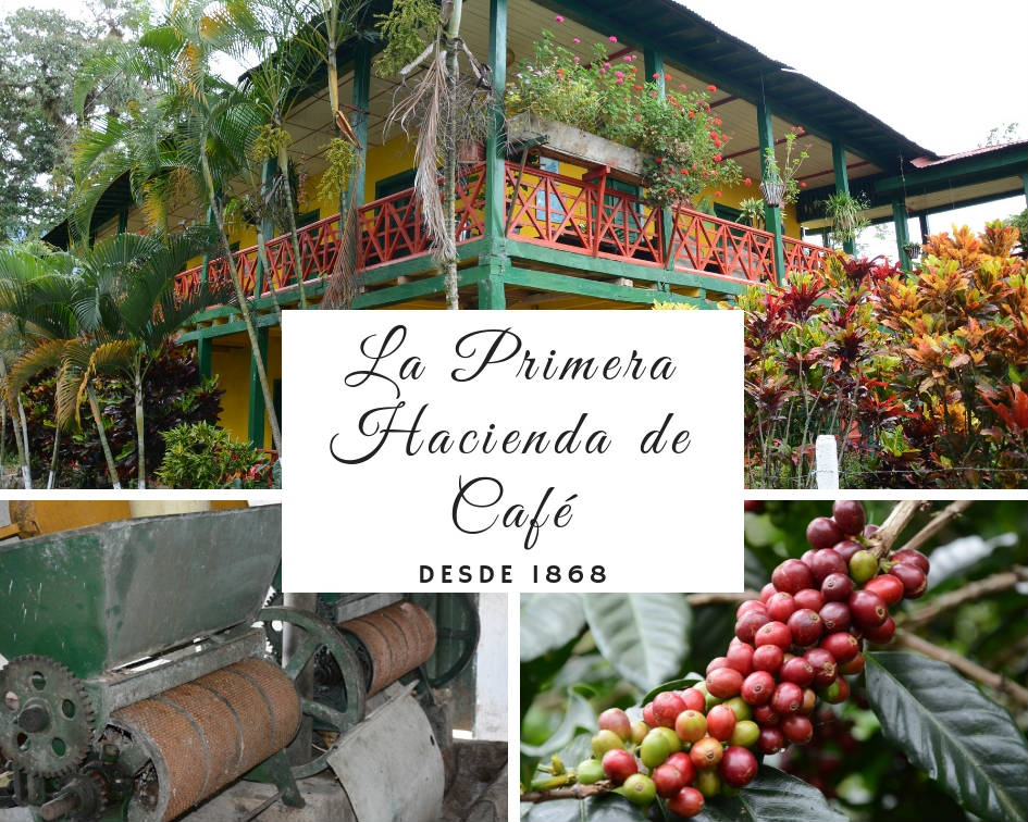 La Primera Hacienda del Café i